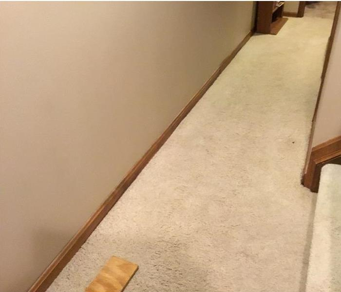 Hallway of a home with carpeted flooring.