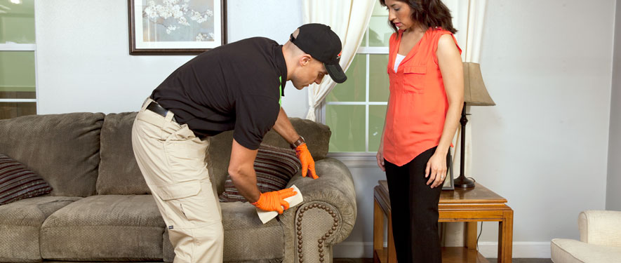 Covington, KY carpet upholstery cleaning
